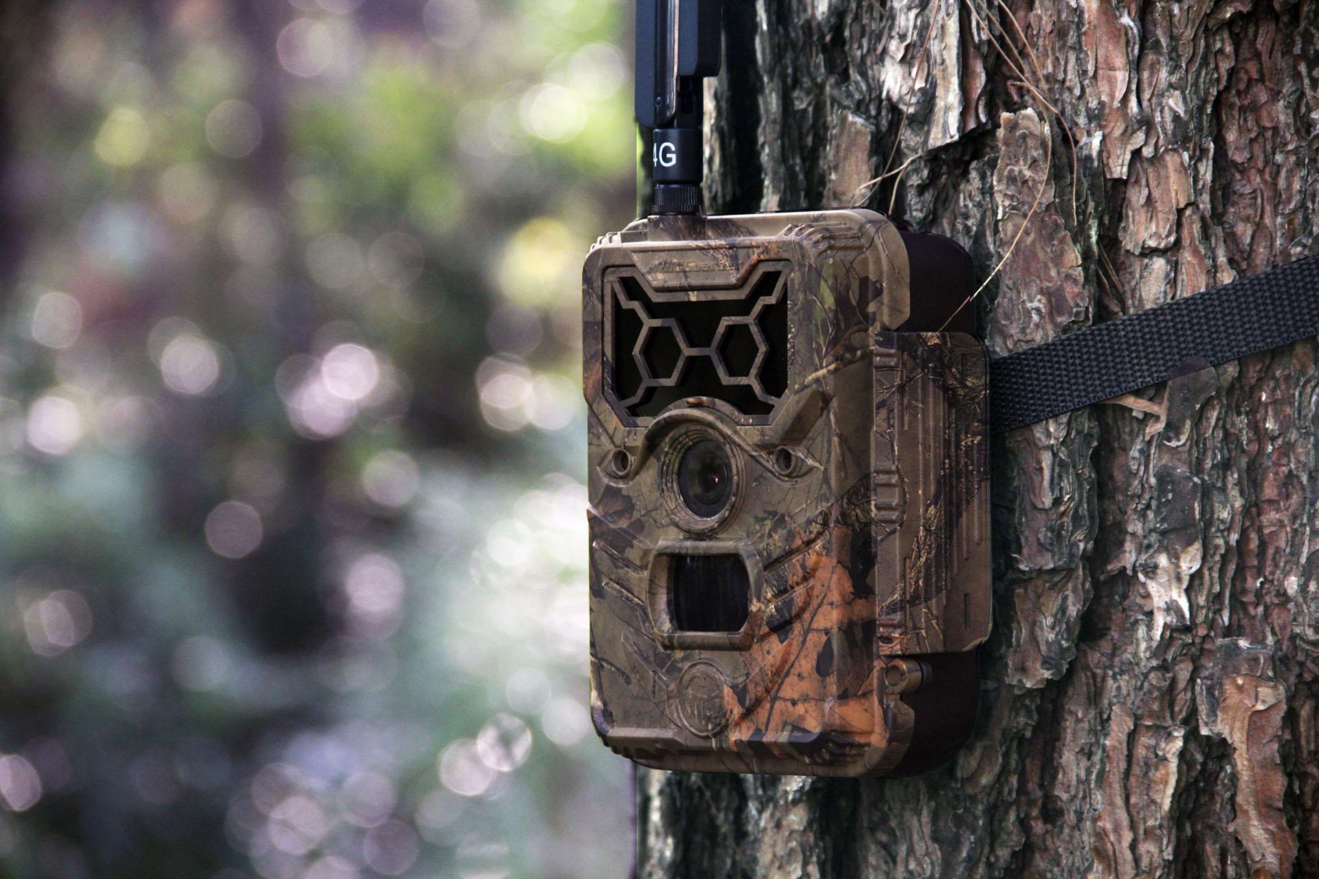WildGuarder 4G Wireless Trail Camera Watcher1-4G 1